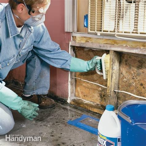 how to treat mold in bathroom how to remove mold the family handyman
