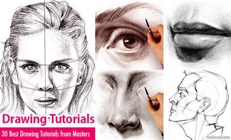 sketchbook shading tutorial easy charcoal drawing tutorial portrait china signs 17
