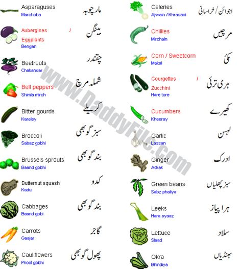 Bird Top Atasan Bayi names of fruits auto design tech