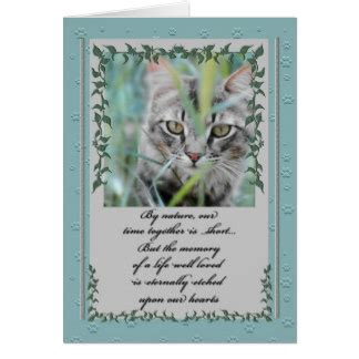pet sympathy cards photo card templates invitations more