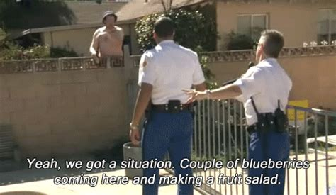 Reno 911 Meme - reno 911 gif find share on giphy