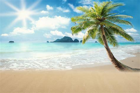 huayi latar belakang indah pemandangan pantai fotografi
