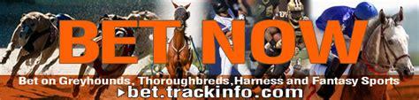 track info trackinfo greyhound racing thoroughbred racing harness racing