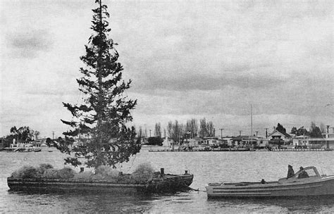 newport christmas boat parade newport beach christmas boat parade 121818