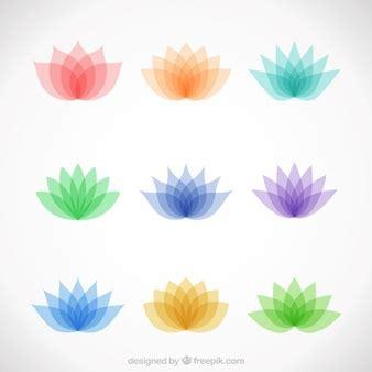 fiori di loto colorati fiori di loto foto e vettori gratis