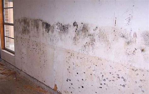 umidit 224 di risalita nei muri interni soluzioni