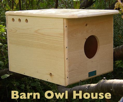 owl house barn owl house pictures to pin on pinterest pinsdaddy