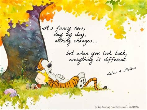 Calvin And Hobbes Quotes by Calvin And Hobbes Quotes On Quotesgram