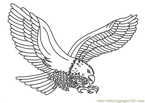 coloring pages of the american eagle 17 best images about eagle coloring pages on pinterest