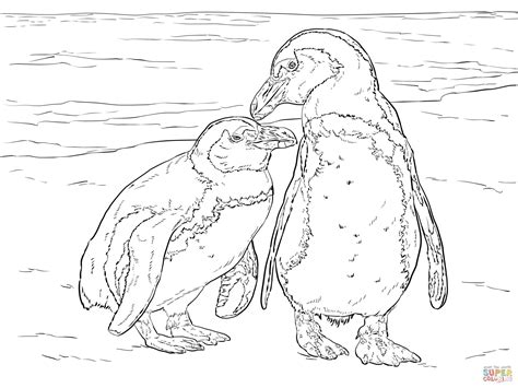 african penguin coloring page two african penguins coloring page free printable