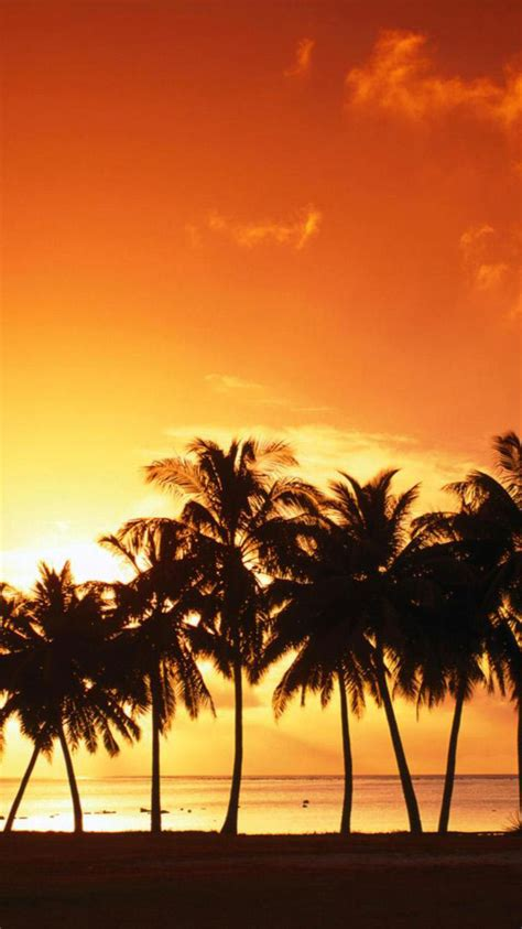 Tropic Iphone tropical wallpaper iphone 4 island 6 tropical wallpaper