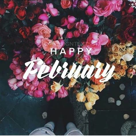 happy february pictures   images  facebook