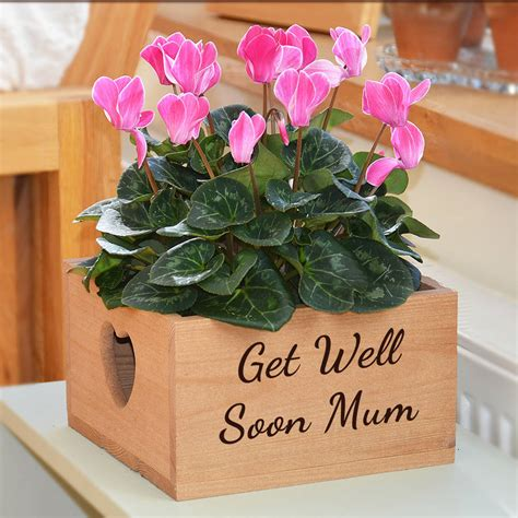 Wooden Plant Pot personalised wooden plant pot holder by plantabox