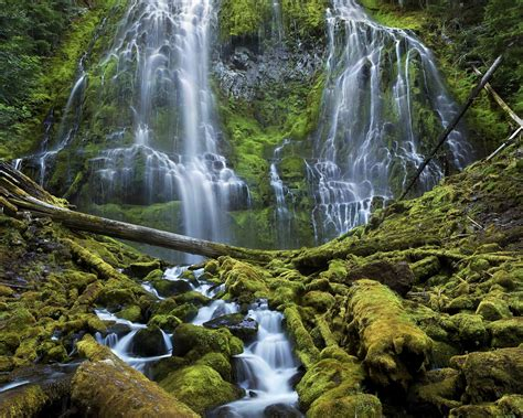 proxy falls willamette national forest  sisters