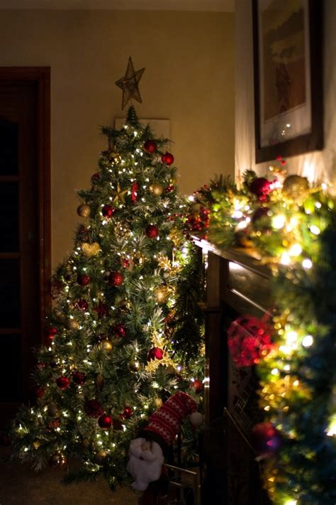 instaliling christmas tree lights tips for installing lights on the tree interior design ideas ofdesign