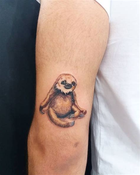 tattoo ideas animals minimal designs sloth colorsloth