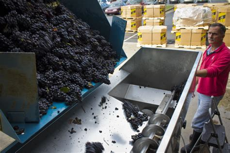 grifo grape crusher destemmer october 2011