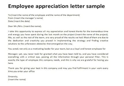 appreciation letter model format employee appreciation letter all about letter exles