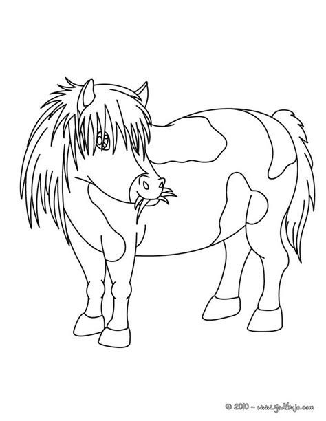 shetland pony coloring pages shetland pony coloring pages coloring pages