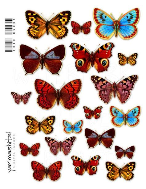 Butterfly Decoupage - butterfly vintage images digital collage sheets colorful