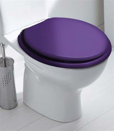 ideas  coloured toilet seats  pinterest