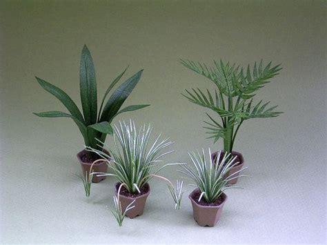 small indoor trees best 25 small indoor plants ideas on pinterest indoor