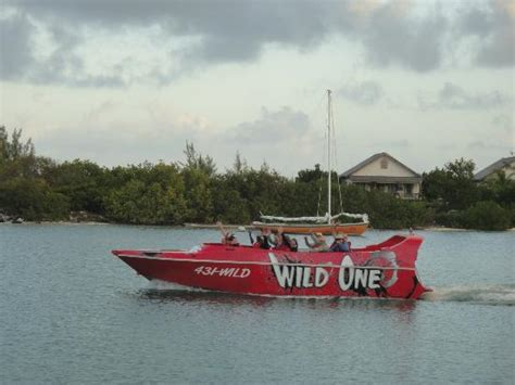 wild jet boat rides wild one jet boat ride turks caicos islands picture of