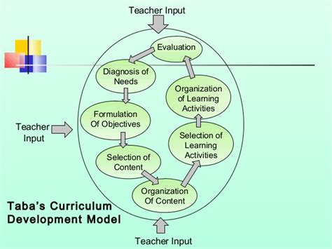 Diseño Curricular Hilda Taba Pdf Curriculum Models And Types