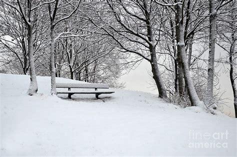 lonely bench lonely bench photograph by randi grace nilsberg