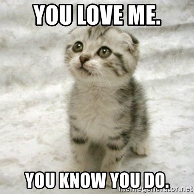 you love me you know you do can haz cat meme generator
