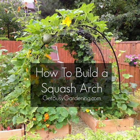 Veggie Garden Arch How To Build A Squash Arch
