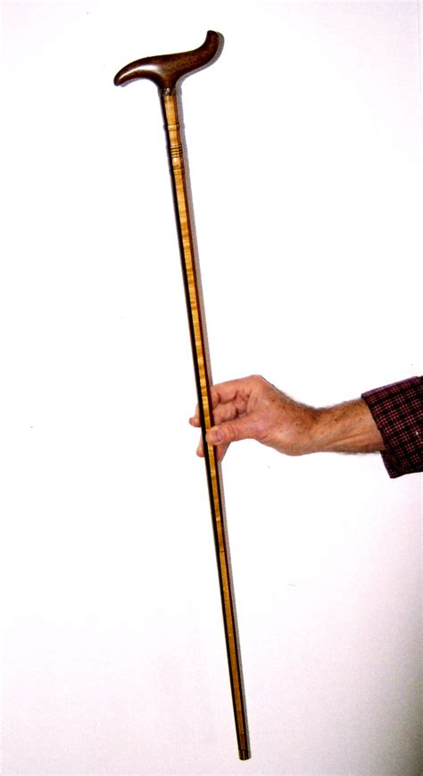walking stick or walking canes