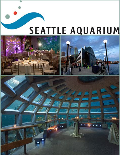 seattle aquarium in the b e spotlight lucky in