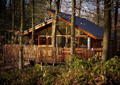 Log Cabins Sherwood Forest Uk by Cabin Interior Picture Of Forest Holidays Sherwood