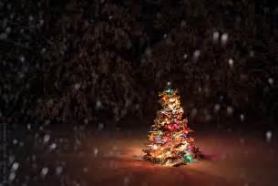 snow falling on christmas tree by rob sylvan stocksy united