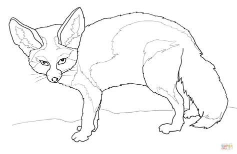 Coloring Pages Fennec Fox | fennec fox coloring page free printable coloring pages