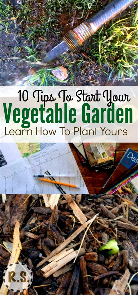 Gardening Must Haves Vegetable Garden Planting 10 Must Haves