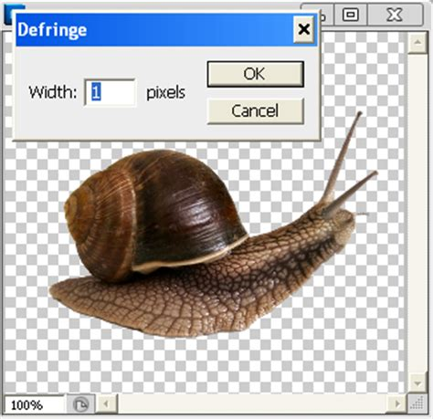 how to get rid of background in photoshop get rid of those pesky edge halos in photoshop sitepoint