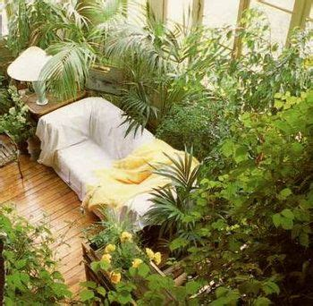 25 best ideas about plant rooms on plants