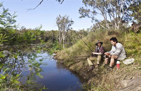 fishing boat jobs victoria itinerary murray river fishing nsw national parks
