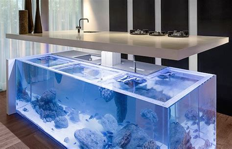 kitchen design aquarium modern kitchen island doubles as spectacular fish tank