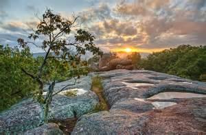 Landscape Rock Missouri You Won T Believe The Trees At Elephant Rocks State Park