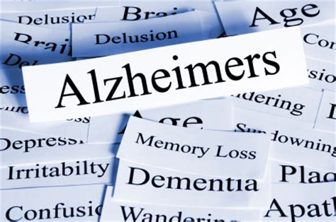 in pursuit of memory the fight against alzheimer s shortlisted for the royal society prize books advancements in alzheimer s research chicago tonight wttw