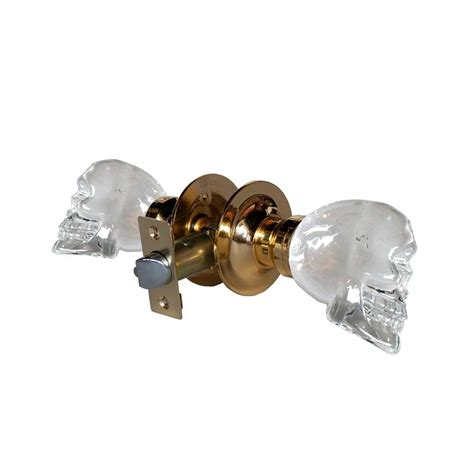 Skull Door Knob by Touch Of Ny Skull Brass Passive Door Knob