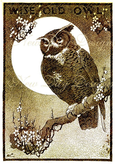 old vintage images wise old owl halloween vintage illustration book by jdayminis