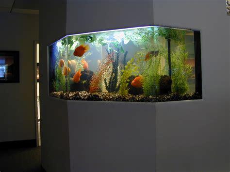 Aquarium Design Freshwater Fish Tank Design Visit The Aquarium Design Home