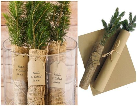 Wedding Favors Trees by Sweet Sentimental Tree Seedlings For The Green