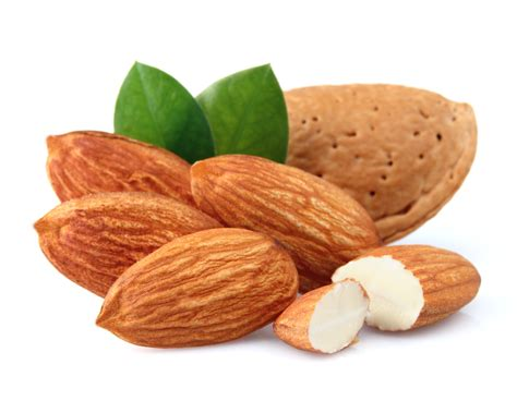 protein almonds the 11 best protein sources for runners competitor