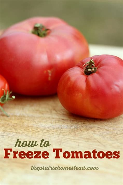 Freezing Tomatoes From The Garden by How To Freeze Tomatoes The Prairie Homestead