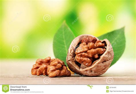 Spicy Food Blood In Stool by Walnuts And Leaves Stock Image Image 20784491